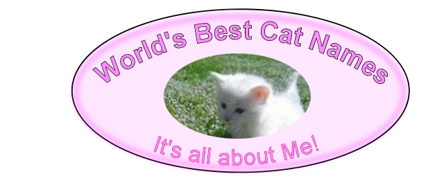 J CAT NAMES, RARE AND UNIQUE CAT NAMES